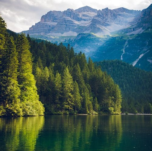 a lake is surrounded by pine trees and there are mountains behind the trees